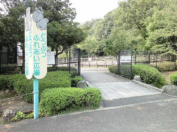 春日井市グリーンピア春日井内の動物ふれあい広場はちょっとした動物園!