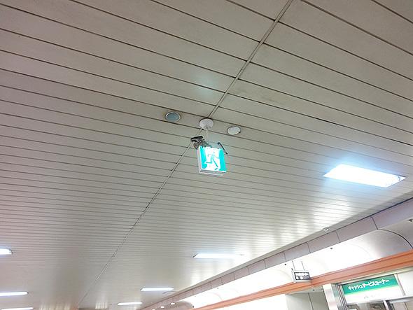 高蔵寺コンコース非常口標識
